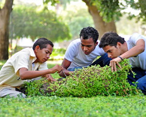 jardin-botanico-servicios-educativos_thumb